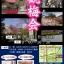 名勝小野梅園